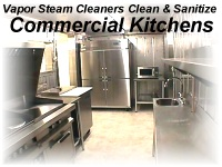 Commercial Kitchen Cleaing KILL SEWER FLIES Vapor Steam Cleaner